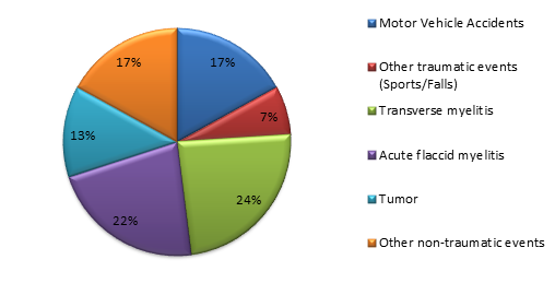 A pie chart depicting the breakdown of diagnoses treated by the Spinal Cord Injury Program at Kennedy Krieger during FY 2019