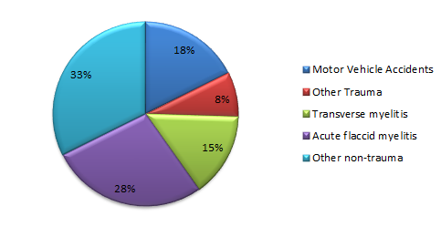 A pie chart depicting the most common diagnoses treated by the Spinal Cord Injury Program at Kennedy Krieger during FY 2019